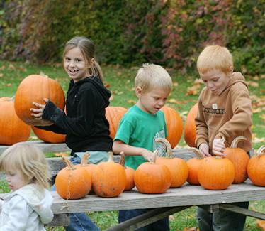 October 2008 106 blog